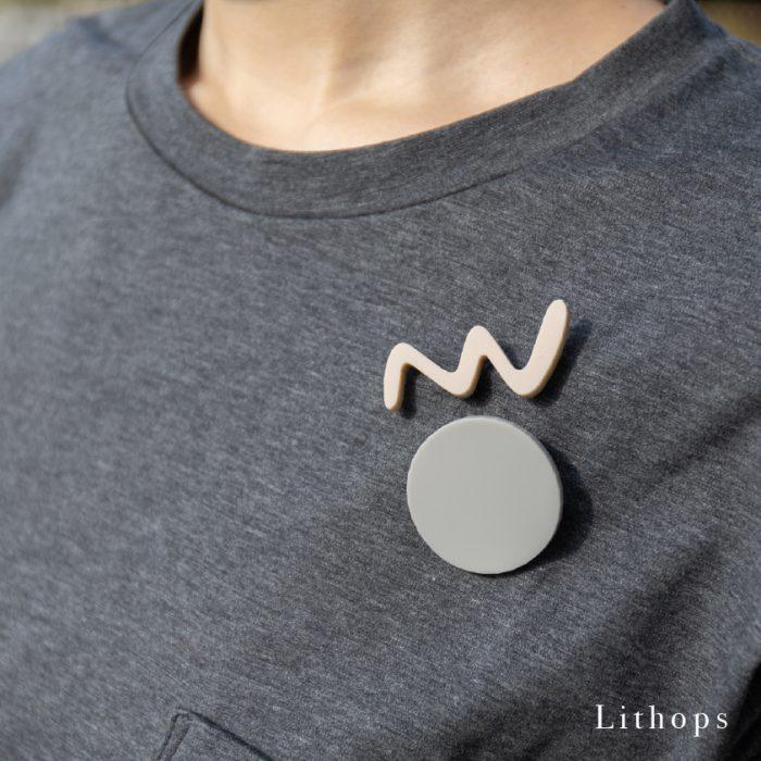 Lithops_3