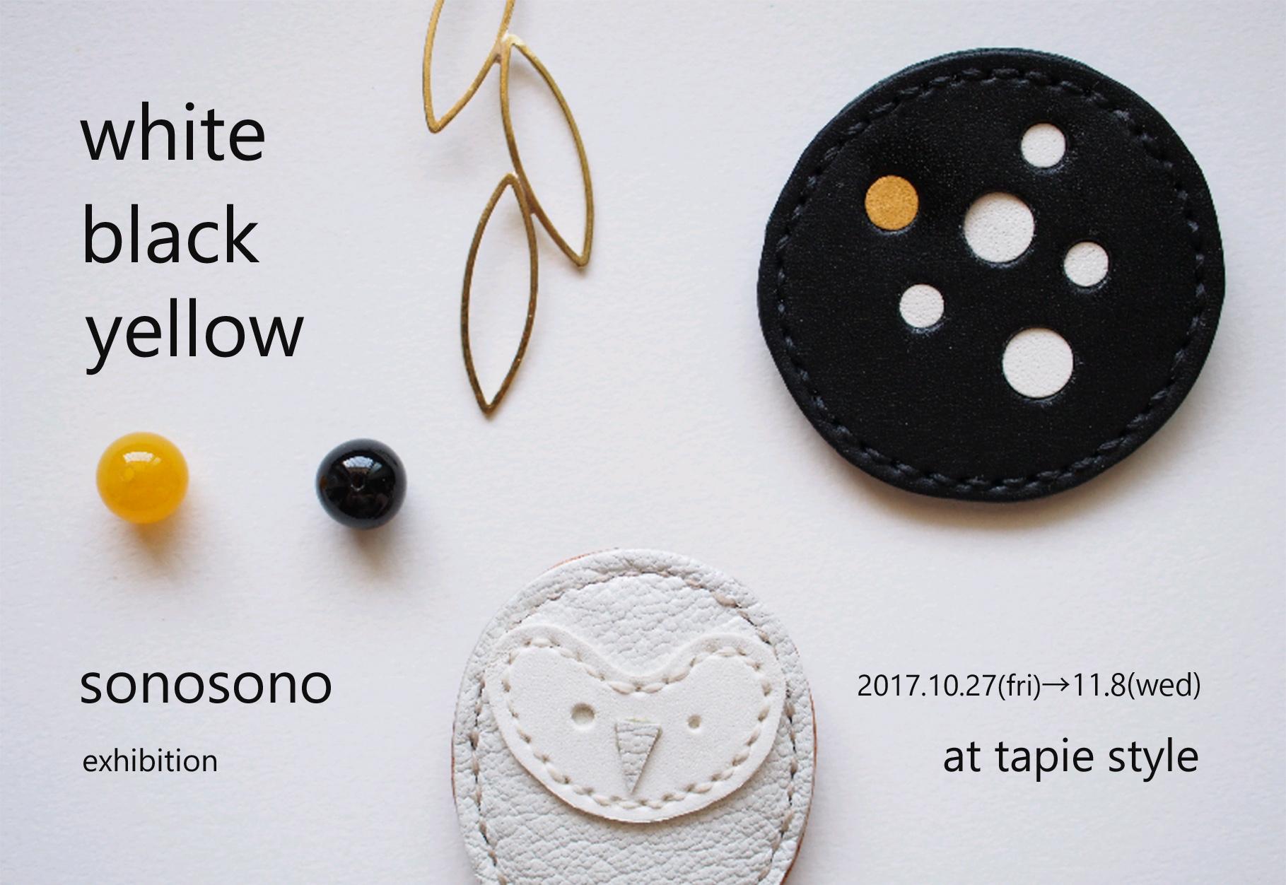 2017 sonosono個展 表面
