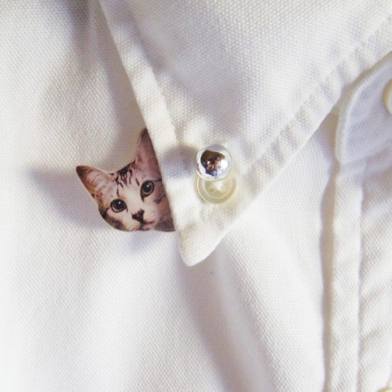 猫様は見たピン